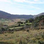 Las vistas desde lo alto de Molly Gallivan's son inmejorables