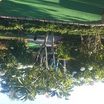 Well maitained gardens