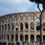 Photo of Roma Dreaming