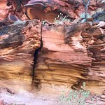 Photo de Kings Canyon