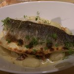 Sea Bass with gnocchi