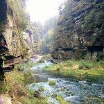 Foto de Saxon Switzerland National Park