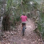 Get off the road and explore the side paths