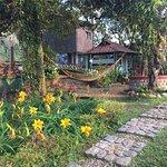Photo of Wild Elephant Eco Friendly Resort