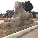 Statue of Ramesses II Foto