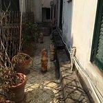 Photo of Hotel Terme Elisabetta