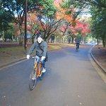 Yoyogi Park (229857439)