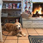 Ginger enjoyed her stay at Carmel Country Inn