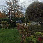 View from our table, Fish Tales Cafe, 3336 Island Hwy W, Qualicum Beach, British Columbia