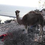 Photo de Agadir Oufella Ruins
