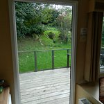 View from door to deck and yet more trees