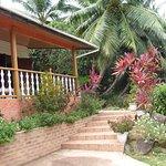 Accès terrasse de la villa sur grand jardin exotique.