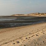 Local state park beach