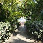 Buccaneer Beach Club Foto