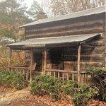 Cabin #0