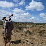 Walking safari with Steve