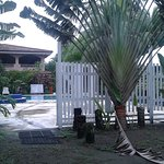 Photo of Hotel Playa Westfalia