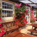 Our beautiful annual flower display in front of the pub.