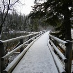 Pyramid Lake 3 - the island bridge
