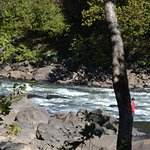 Small Rapids on the New River