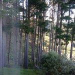 Kaipara Views Eco Lodge