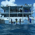 "Dive / snorkel deck at back of the floating hotel ""Reef Encounter"""