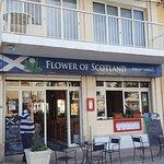 The Flower of Scotland Foto