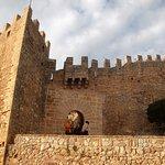Torre de Canyamel Foto