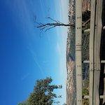 20161107_073445_large.jpg