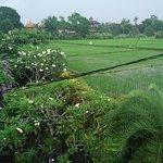 Pangkung House