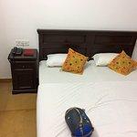 Photo of Hotel Sanjay Villas