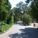 Paloma Club Sultan Ozdere Foto