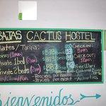 Foto de Bajas Cactus Hotel y Hostel