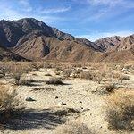 Anza-Borrego Desert State Park Foto