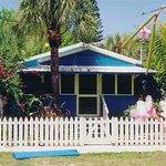 Beach Palms Foto