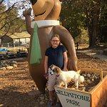 Yogi Bear's Jellystone Park Marion Foto