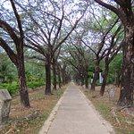 Lagenda Park Foto