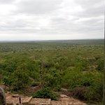 Photo de Kwa Madwala Private Game Reserve