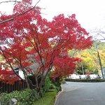 Photo de Okumizuma Onsen