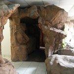 Picture This - Pretoria North Lodge & Conference Center Foto