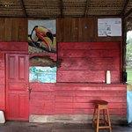 Ararinha Jungle Hotel Foto