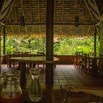 Blick durch den Speisesaal in den Garten