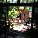 Joli jardinet, espace frais et intime