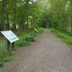 Salisbury Rail Trail
