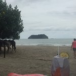 View from Tacos's y Tapas - Isla Chora and horses on beach.