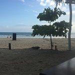 Typical view anywhere at Playa Samara - perfect. 5k beach.