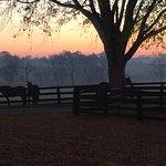 Foto di The Guesthouse at Rosecrest Farm