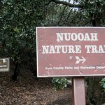 Nuooah Nature Trail - great fun for kids, but older adults need hiking sticks.