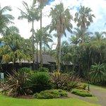 Zdjęcie BreakFree Aanuka Beach Resort