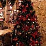 Chrismas tree at Limonah